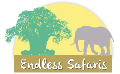 Logo Endless Safaris